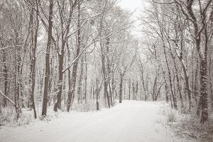Tips om in de winter te blijven lopen